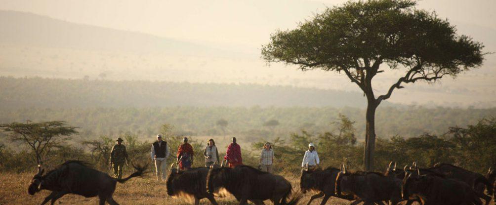 Mara – Walking Wilderness